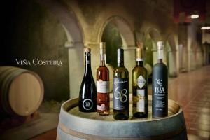 ramon_vaquero_viña_costeira_1
