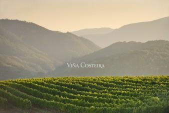 ramon_vaquero_vina_costeira_2_publicidad