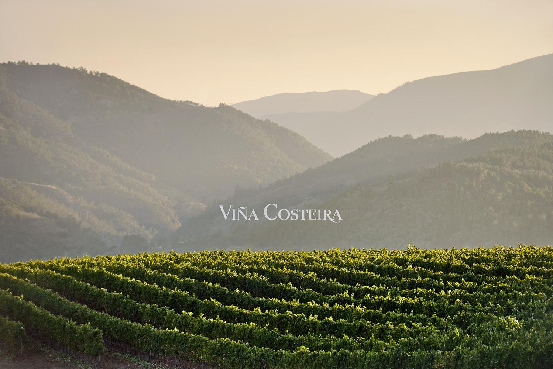 Ramon_Vaquero_viña_costeira_publicidad_fotografos_Vigo_estudio_